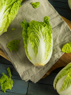 Incorporating recipes for Napa cabbage in your meal plans is a good way of adding fiber and vitamins to your eating plan as well as trying some fun new dishes!